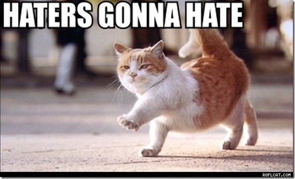 haters_gonna_hate_pics_cats_caturday_thumb.jpg