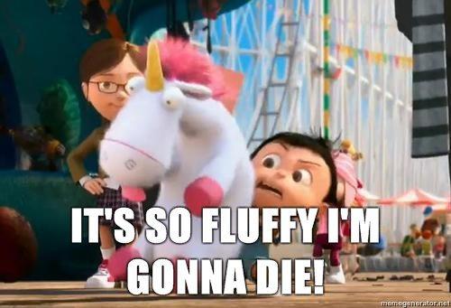 fluffy-1