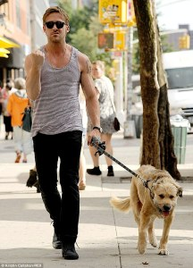 Or Ryan Gosling AND a golden retriever!